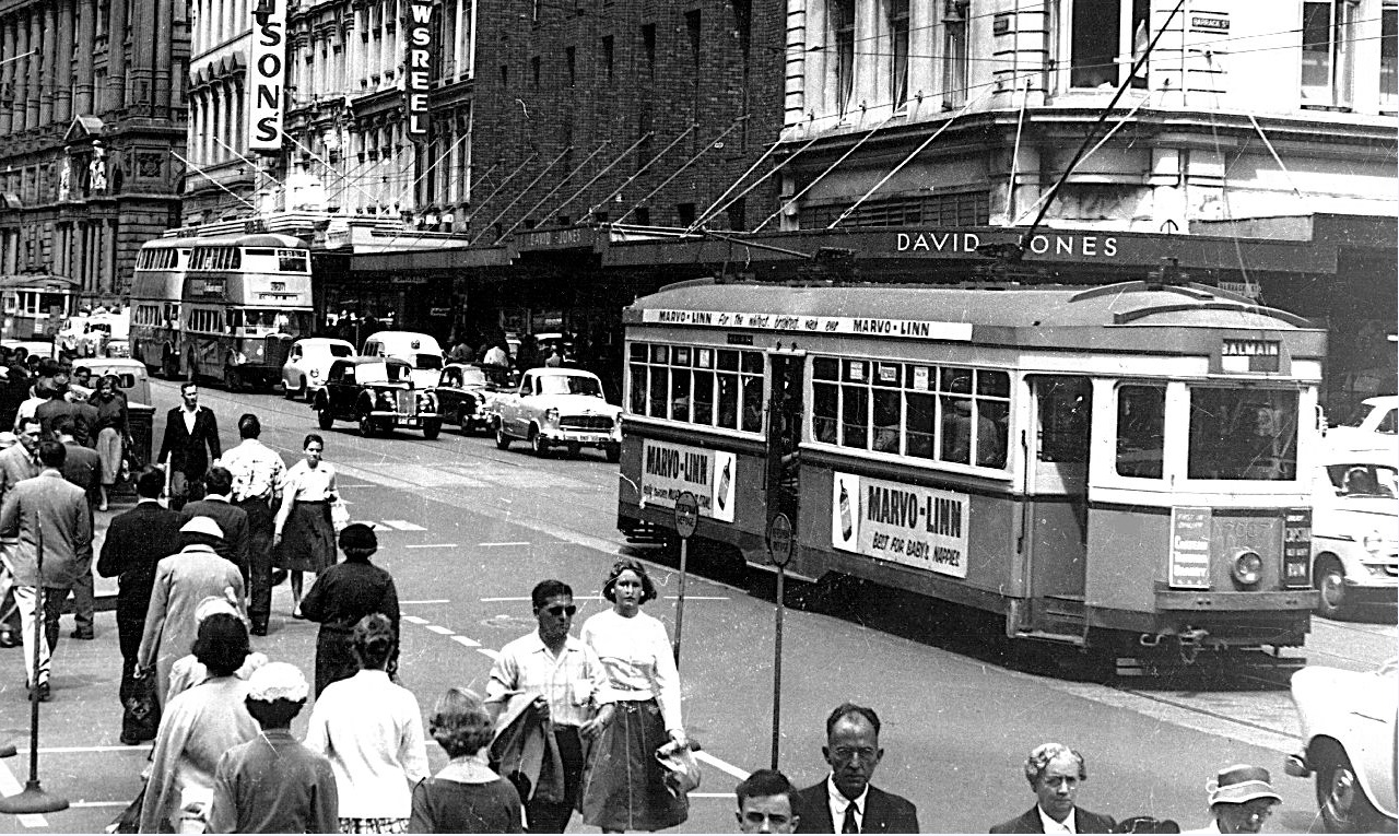Tram in George St